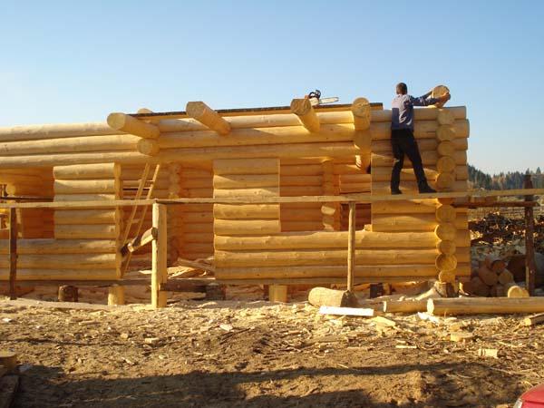 Case in legno rotondo for Case di legno in romania