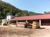 Vendita impianto legname