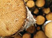 Volumi record di prodotti a base di legno nel 2018